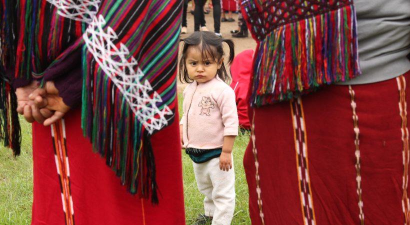 Construcción de condiciones de vida digna para mujeres indígenas sobrevivientes de violencia sexual